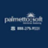 Go to the profile of PalmettoSoft